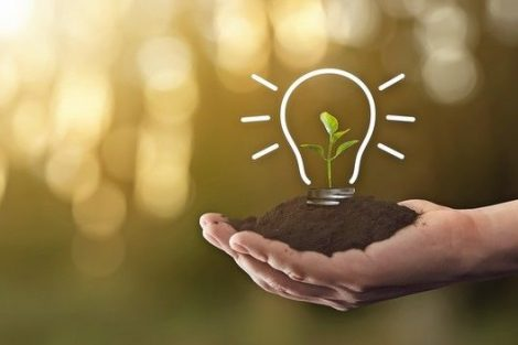 Light_bulb_outline_drawn_with_a_plant_inside_in_a_person's_hand-_concept_of_caring_for_the_environment_and_sustainable_energy