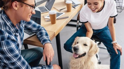 smiling_young_colleagues_looking_at_dog_in_office