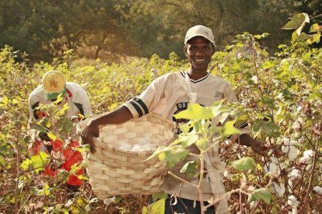 Nachhaltige Berufsbekleidung