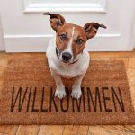 dog_welcome_home_on_brown_mat
