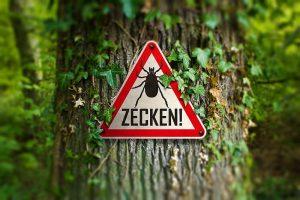 Zecken-Warnschild an einem Baum