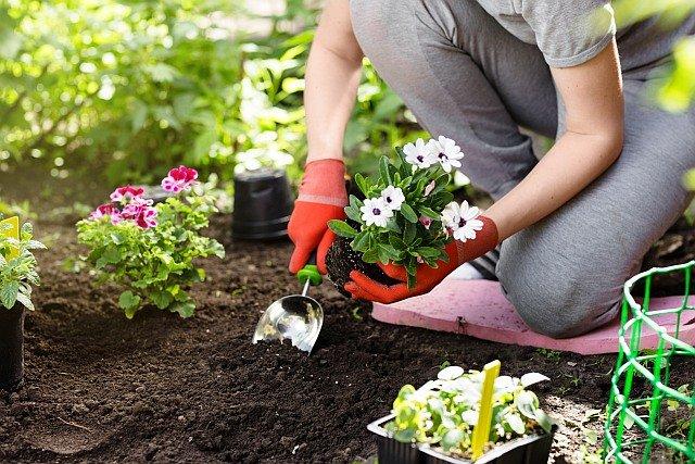 Außergewöhnlich Gesund im Garten arbeiten. Tipps zur Gartenarbeit - #TO_17